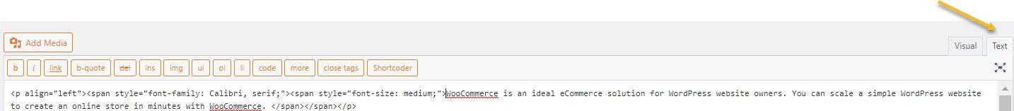 Switch to the HTML WordPress editor