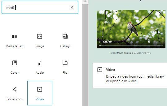 WordPress video block