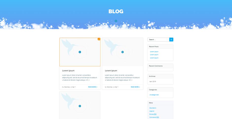 ski resort blog customization