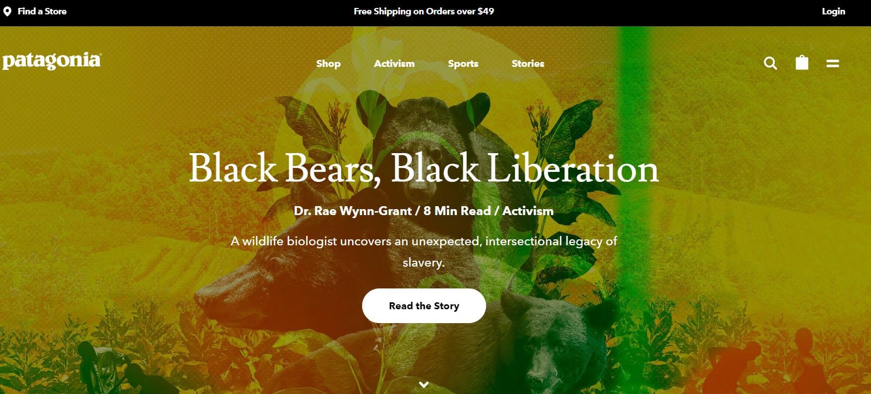 Patagonia website header
