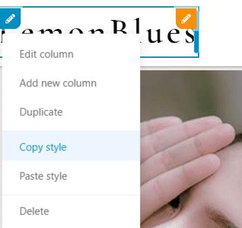 copy style in WordPress