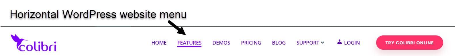 horizontal WordPress menu example