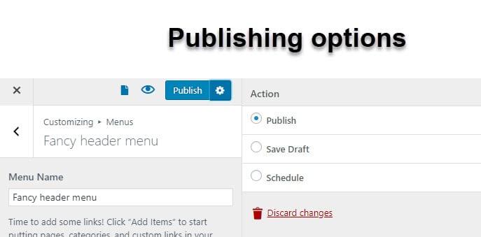 WordPress menu publishing options