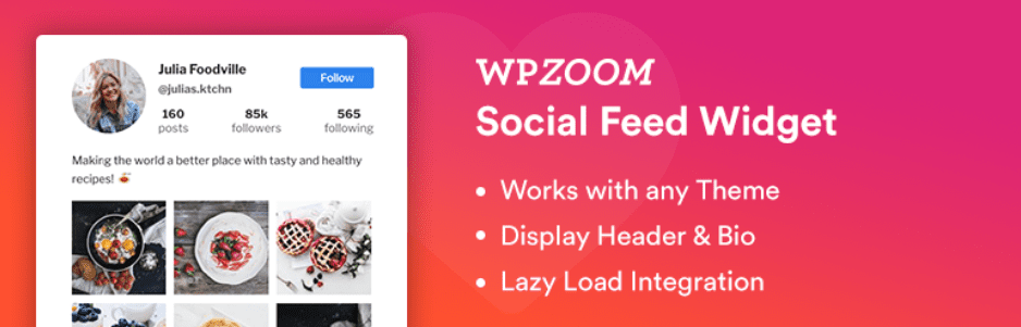WPZOOM WodPress Instagram Widget