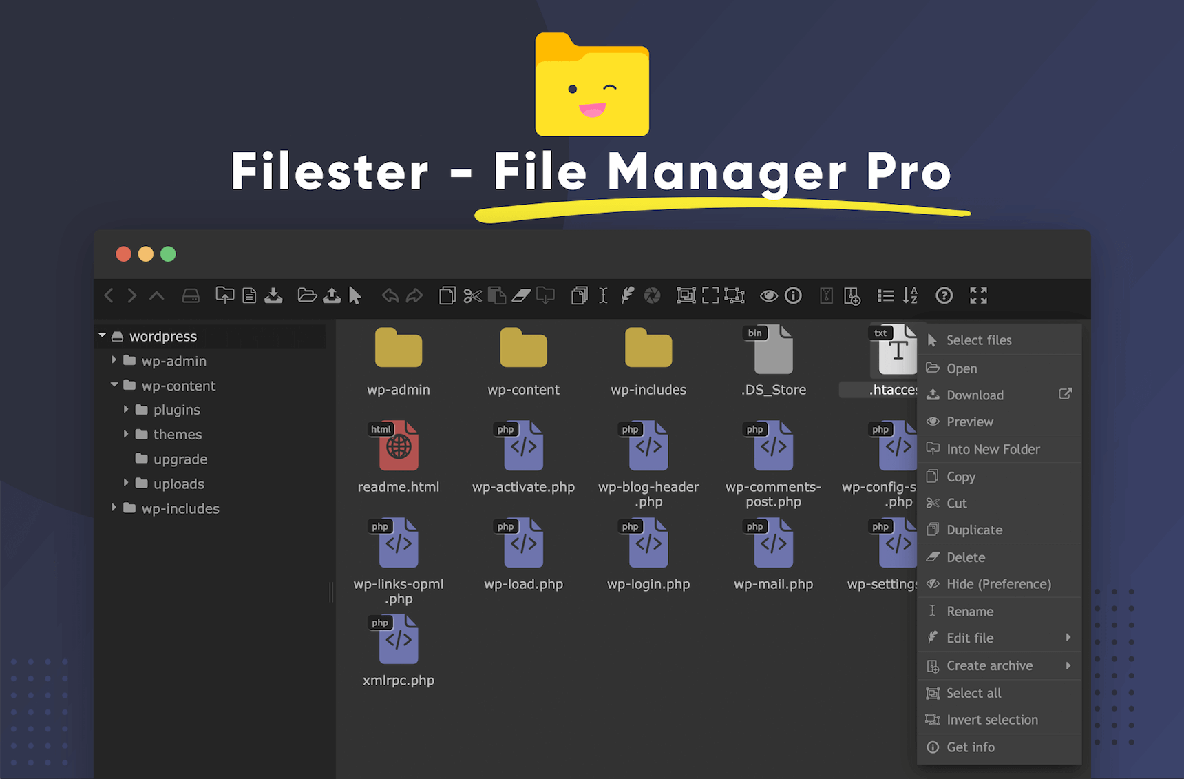 Filester WordPress File Manager