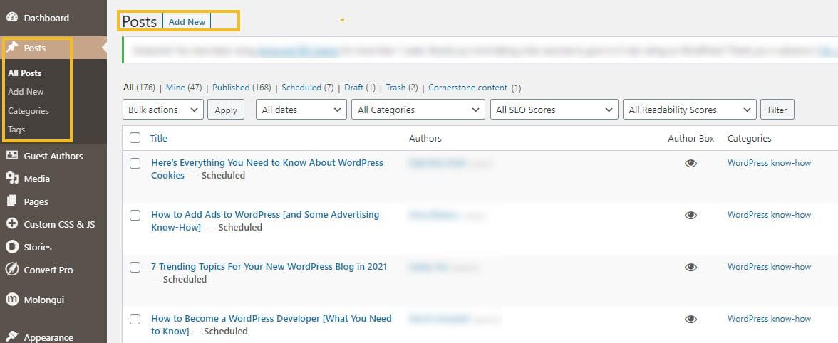 posts in WordPress