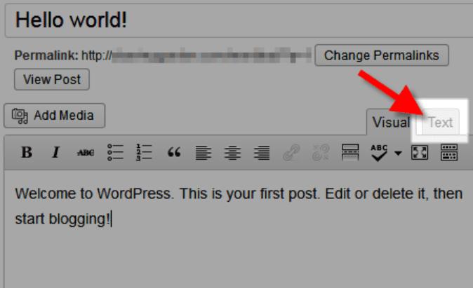 The WordPress text editor